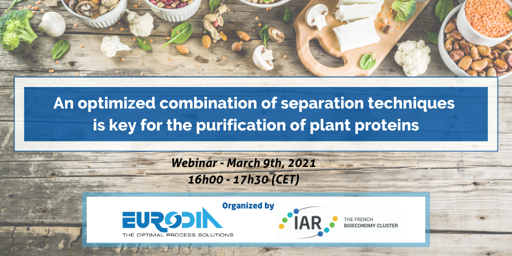 An optimized combination of separation technics is key for the purification of plant proteins