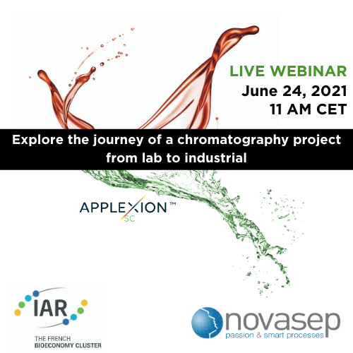 Explore the journey of a chromatography project from lab to industrial